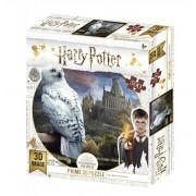Tucker's Fun Factory 3D Image Puzzel - Harry Potter Hedwig (500)