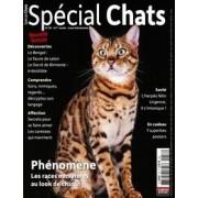 Spécial Chats - Abonnement 12 mois