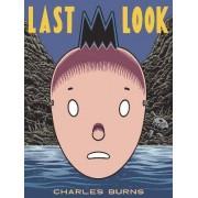 Last Look by Charles Burns