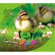 Het is lente!: Dieren - Martha E.H. Rustad