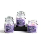 Set of 3 Hosley Lavender Fields Highly Fragranced Jar Candles