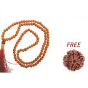 ReBuy 5 Mukhi Rudraksha Mala For Jaap 5 Mukhi Rudraksha Bead FREE