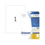Herma 4375 Etiketter 210 x 297 mm Polyesterfilm Transparent 25 st Permanent Universaletiketter, Väderbeständiga etiketter