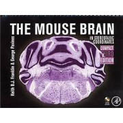 The Mouse Brain in Stereotaxic Coordinates Compact by George Paxino...