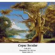 Copac secular (kit goblen)