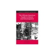 Livro - The African-American Family in Slavery and Emancipation