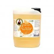 Biolu detergent ecologic universal cu ulei de portocale 5L