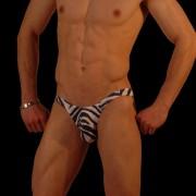 Don Moris Zebra Bikini Underwear DM030942