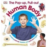 The Pop-Up Pull Out Human Body