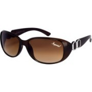 Imperial Club Oval Sunglasses(Brown)