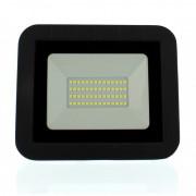 Proiector LED Well, 30W, 2400 lm, IP65, 6500K, negru