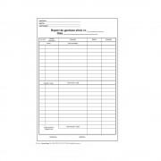 Raport Gestiune Zilnic A4, 100 File/Carnet - Formular Tipizat de Gestionare