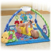 Centru activitati Fisher Price Discover n Grow Deluxe Musical Mobile Gym