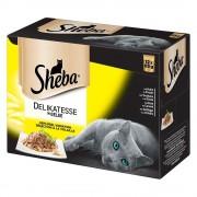 Sheba -5% Rabat dla nowych klientówPakiet Sheba Delicato, 12 x 85 g - Wybór Drobiowy w galarecie Darmowa Dostawa od 89 zł i Promocje urodzinowe!