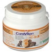 Vetoquinol GmbH CaniViton® Protect