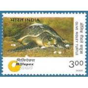 Endangered Species Millepex 2000 Turtles Se - Tenant Batagur Terrapin Olive Ridley Turtle Rs.3