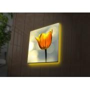 Tablou pe panza iluminat Ledda, 254LED4231, 28 x 28 cm, panza