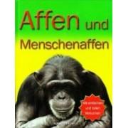 Affen und Menschenaffen Maimutele