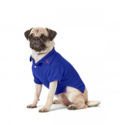 Ralph Lauren Pet Cotton Mesh Dog Polo Shirt - Heritage Royal - Size: Small