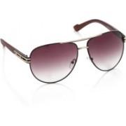 Rockford Aviator Sunglasses(Violet)