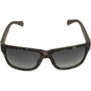 Fossil Wayfarer Sunglasses(Green)