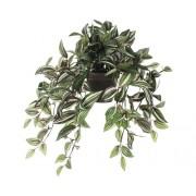 Planta artificiala, Tradescantia, inaltime 25 cm, verde