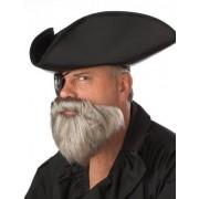 Barba cinzenta pirata das caraibas homem