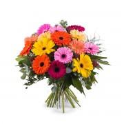 Interflora Ramo de Gerberas multicolor - Flores a Domicilio