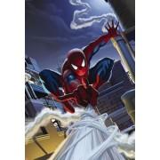 "Fototapet ""Spiderman pe acoperis"" - 184 x 127 cm"