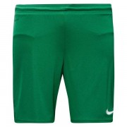 Nike - Shorts Park II Knit With Brief Grön