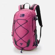 【セール実施中】【送料無料】スパイク20 spike 20 Pink バックパック