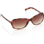 Fastrack Rectangular Sunglasses(Brown)