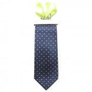 Cravata barbati cu batista decorativa de buzunar - albastru/verde