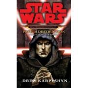 Star Wars: Darth Bane - Path of Destruction, Paperback