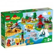 LEGO DUPLO dieren van de wereld 10907