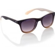 Fastrack Wayfarer Sunglasses(Violet)
