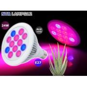 NTR LAMPG12 24W LED növény nevelő lámpa E27 foglalathoz 9x2W piros és 3x2W kék CREE LED