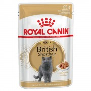 Royal Canin Breed -5% Rabat dla nowych klientówRoyal Canin Breed British Shorthair Adult w sosie - 24 x 85 g Darmowa Dostawa od 89 zł i Promocje urodzinowe!