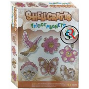 Shell Craft Fridge Magnets by Zeus Design your own Fridge Magnets from Sea Shells Kids Art and Craft Kit Do it yourself
