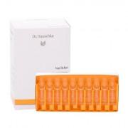 Dr. Hauschka Renewing Night Conditioner siero per il viso per tutti i tipi di pelle 50 ml donna