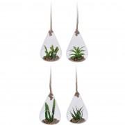 Plantă suculentă artificială în suport de sticlă, 18,5 cm
