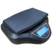 Pesco Electronic Compact Weighing Scale(Black)