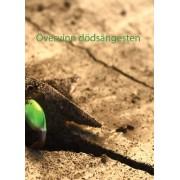 Övervinn dödsångesten - Bekämpa din rädsla för döden