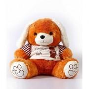 Adorable Long Ear Brown Teddy
