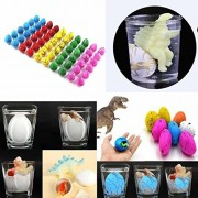 Dinosaur Eggs Hatch Eggs ,1 Box Water Hatching Egg Box Large Expansion Animal Egg Kids Educational/Baby Gift /Education Toy (C)