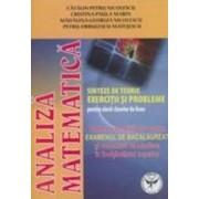 Analiza Matematica - Sinteze De Teorie. Exercitii Si Probleme - Catalin-Petru Nicolescu