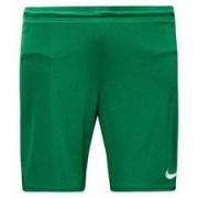 Nike - Shorts Park II Knit With Brief Grön