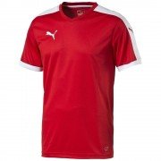 PUMA Pitch Teamwear Shirt - KIDS - Rood/Wit - 128 cm