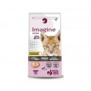 Visan Imagine Cat Kitten 2 Kg