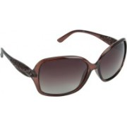 Polaroid Rectangular Sunglasses(Brown)